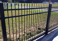 Concord Style Spear Head Fence Panels 1.8h (Sold Per 2.3m Length